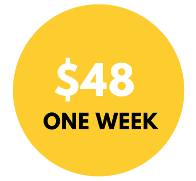 Yellow circle written $48 in white -$48, refers to the weekly salary of a midwife in Sierra Leone